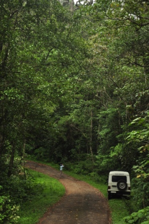 Road to Upper Kodayar where logging was carried out on either side (photo by K S Seshadri)