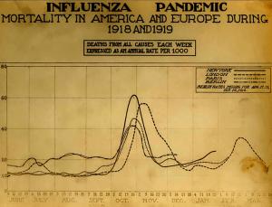 La mortalité, généralement sous les 10 pour 1000 monte au mois d'octobre 1918 à 40 voire 60 pour les plus grandes villes européennes et américaines.