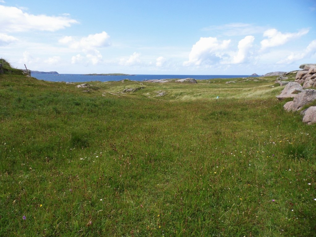 Species rich grassland near the coast in Co. Donegal, one of the few locations I've come across this species in the North of the country – Oisín Duffy