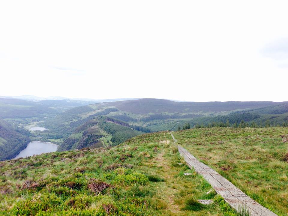 iPhone shot taken along the route above one of the Glendalough lakes. Incredibly enjoyable hike with great wildlife encounters and spectacular views. Photo- Rebecca Doyle