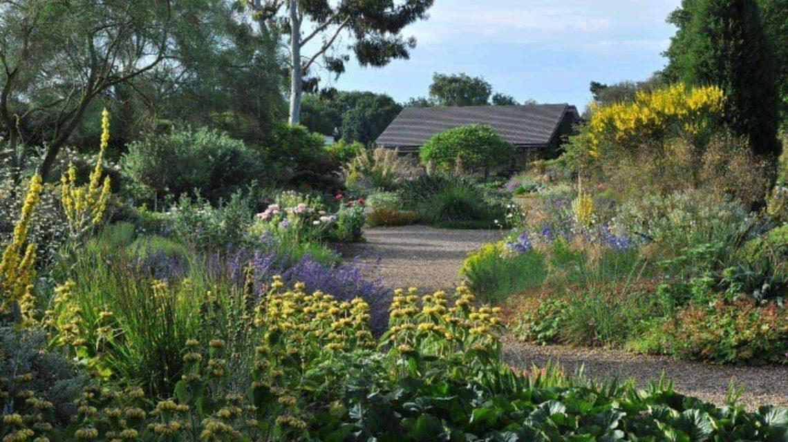 Beth-Chatto-Gardens-Essex-min