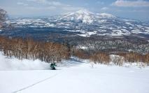 birchgrove-skier-slope