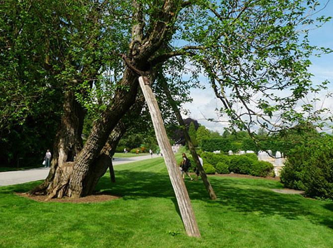 Longwood-Garden-leaner