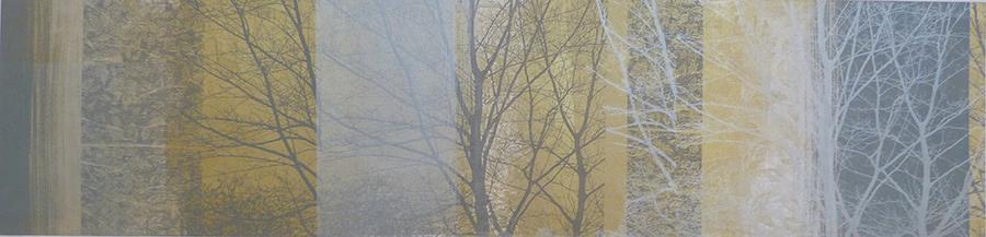 Anne Skinner. Woodland - Vista (1)