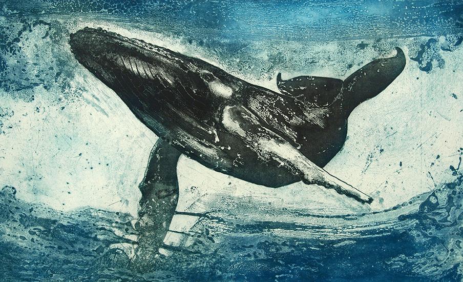 Marion MacPhee - Humpback Whale