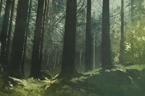 Gregory Moore 'Sunlit'