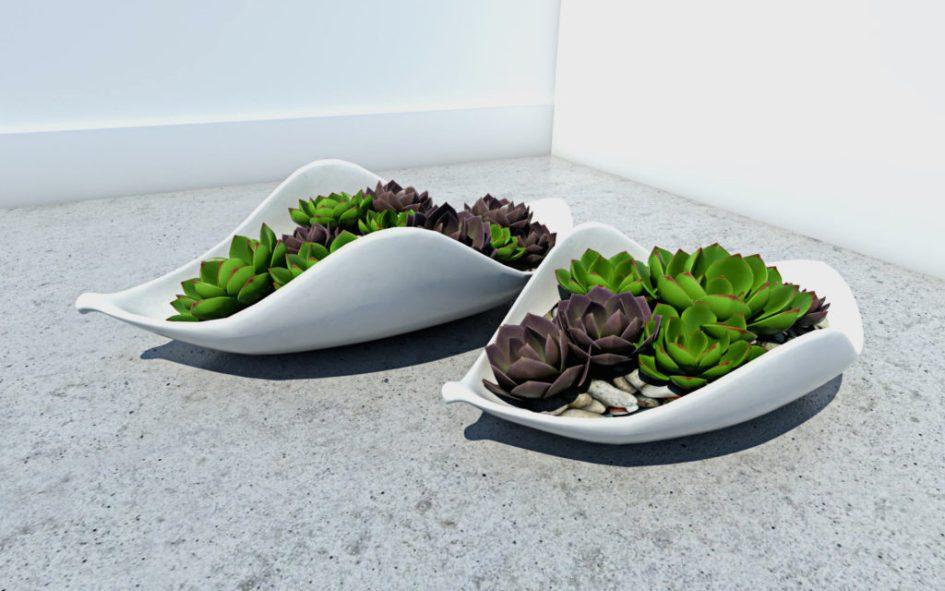Rendered Plants