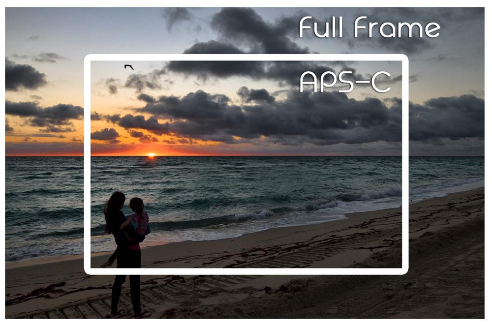 full frame v aps-c | damnxgood.com