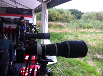 Canon 500/4