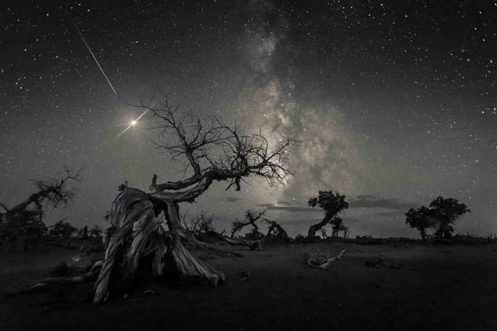 S344330308400_Winner_Across the Sky of History © Wang Zheng