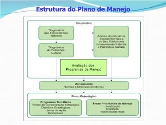 ESTRUTURA DE PLANO DE MANEJO DE UNIDADE DE CONSERVAÇÃO