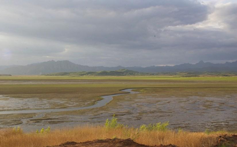Valuing Wetlands in China