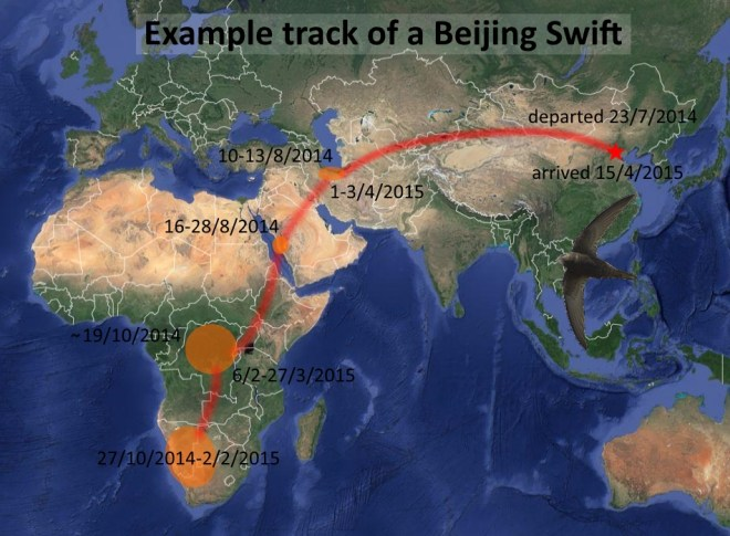 A typical track of a Beijing Swift based on preliminary analysis of the data captured today.