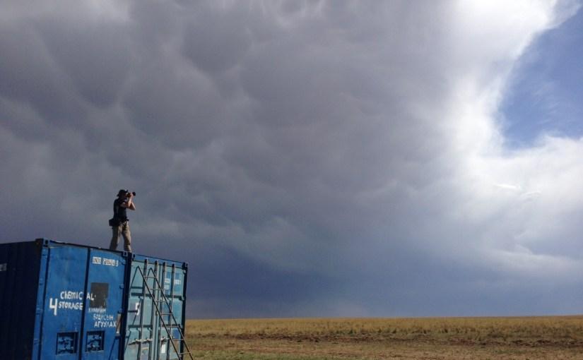 Jankowski's Bunting Survey In Mongolia Draws A Blank