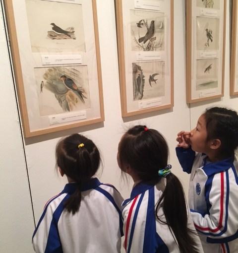 Exhibition of 19th Century Bird Art Opens In Beijing