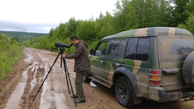 2018-06-16 Zhang Wu scoping for Black-billed Capercaillie, Wuerqihan
