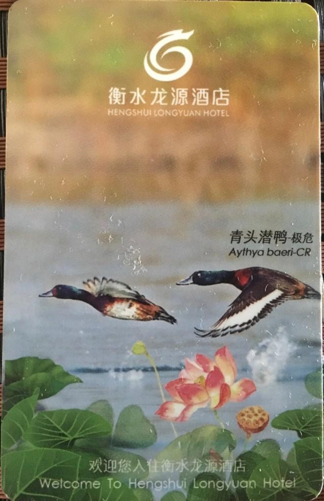2018-07-10 Hengshui Hu Longyuan Hotel BP