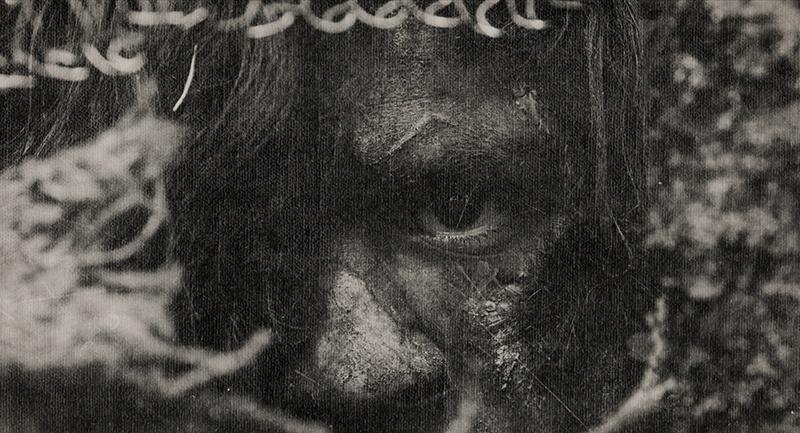 Feral-Ravenna-Nightmare