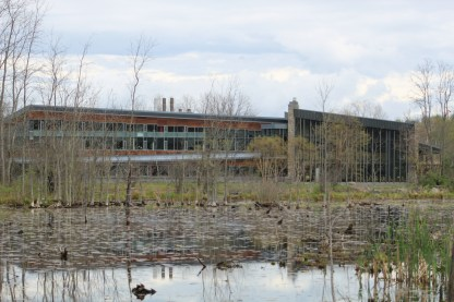 The Lab from acroos the pond Image by BirdNation)