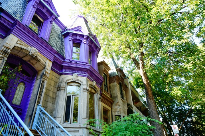 Incontournables à Montréal : idées visites