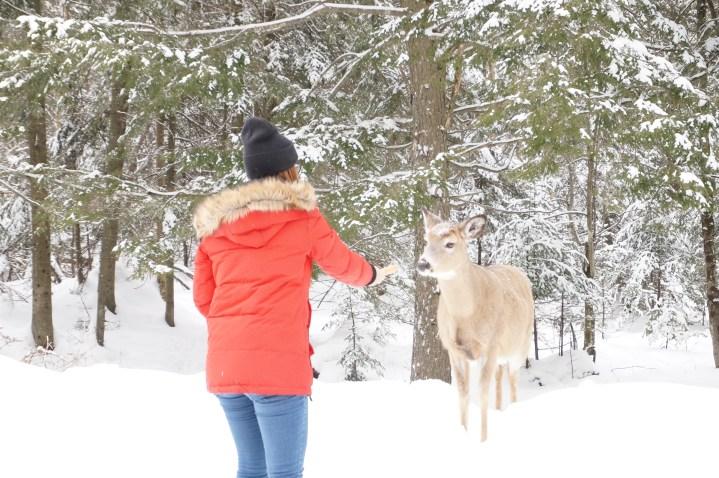 Activités pour survivre à l'hiver québécois