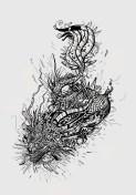 wpid-dragon.jpg