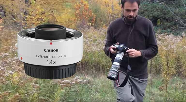 teleconverter for bird photography
