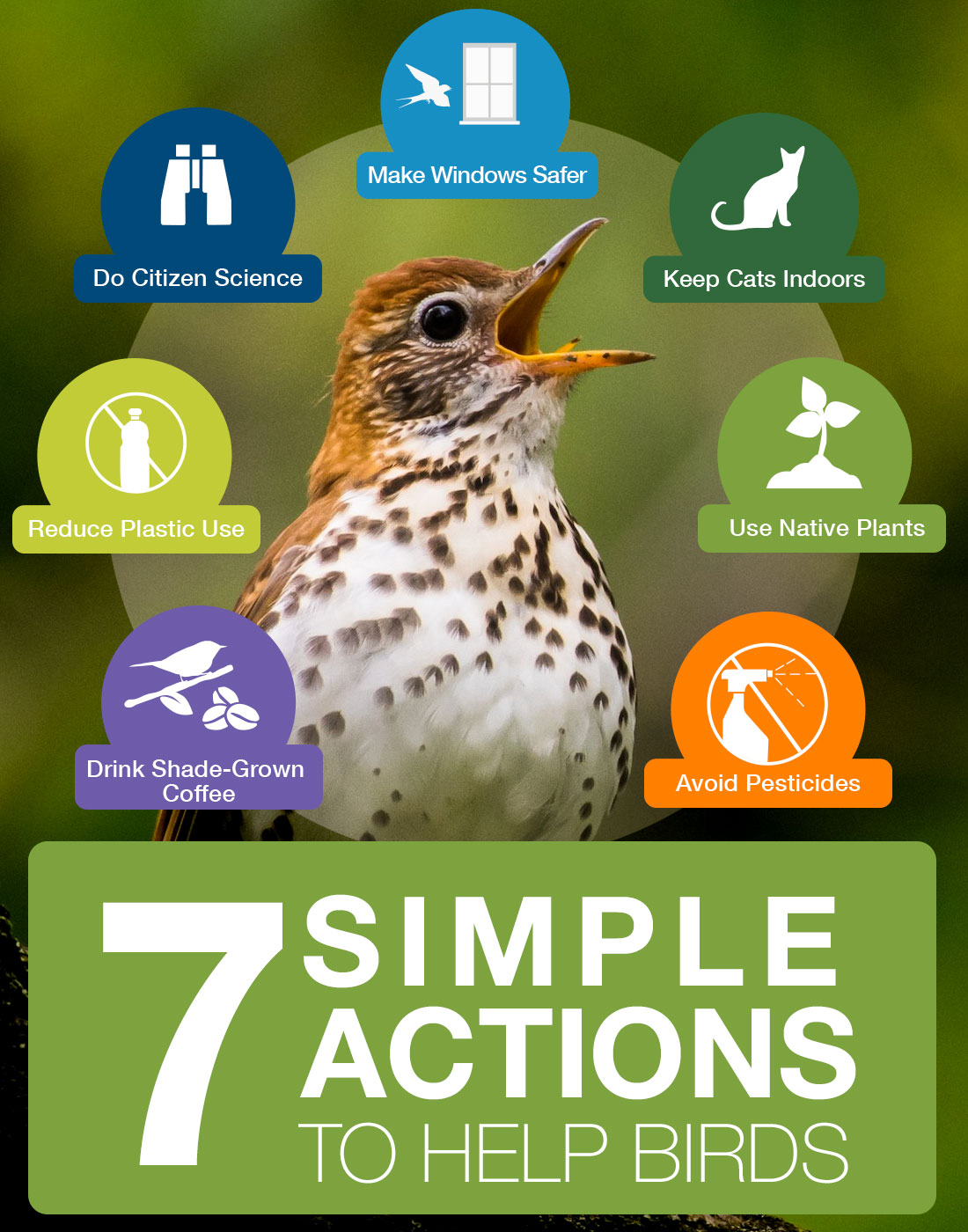 Seven Simple Actions