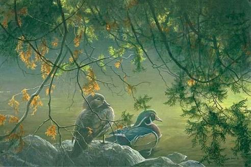 "Robert Bateman ""On the Pond —Wood Ducks"""
