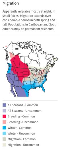 Audubon Field Guide's RUDU range map