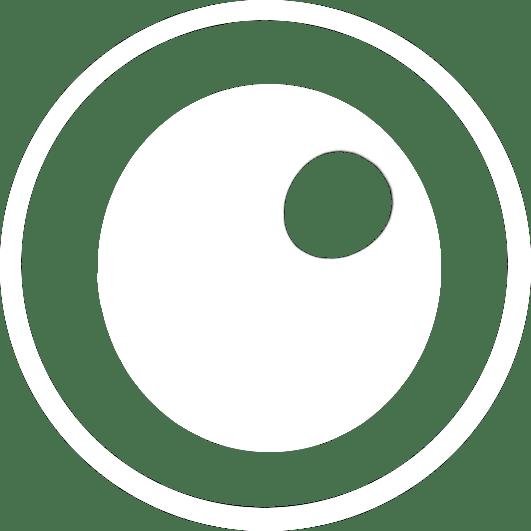 Logo Bird's Eye Communications
