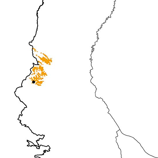 Tinamus osgoodi