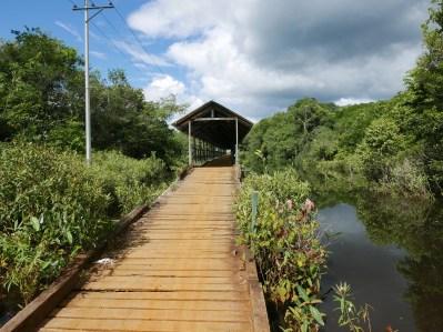 Urania bridge