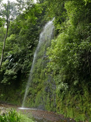 Roadside waterfalls are everywhere along the old Buenaventura Road.