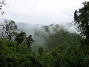 Reserva Yanacocha