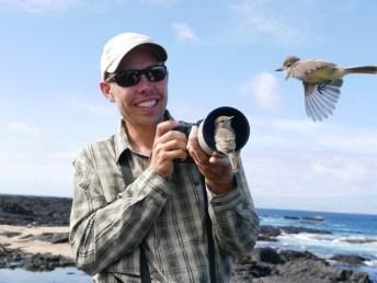 Curious Galapagos Flycatchers