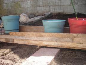 colette's garden 003