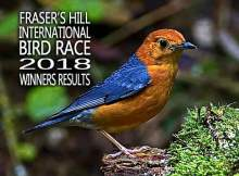 Results for Fraser's Hill International Bird Race 2018