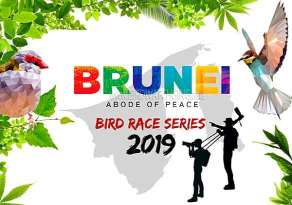 Brunei Bird Race Series