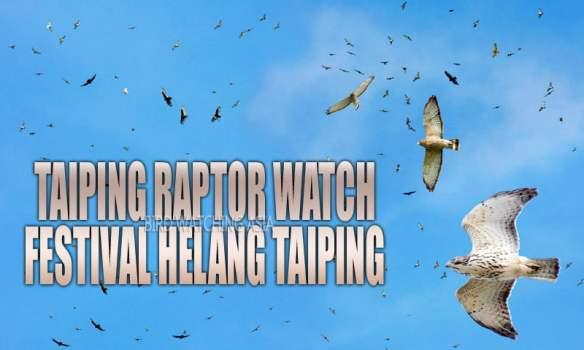 Taiping Raptor Watch