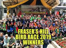 Fraser's Hill Bird Race 2019 Results