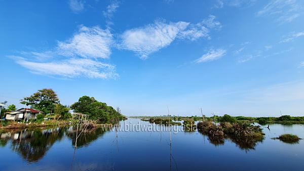 Kuala Baram Wetlands