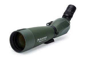 Regal M2 by Celestron Birding Spotting Scope
