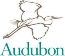 Birding Holidays - Audubon Christmas Bird Count