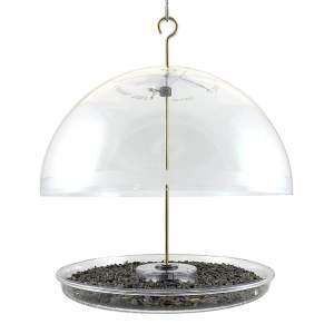 Dome Bluebird feeder