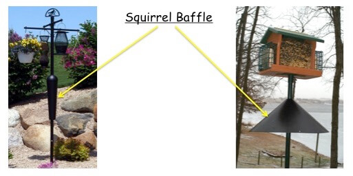 Squirrel Proof Bird Feeder Poles