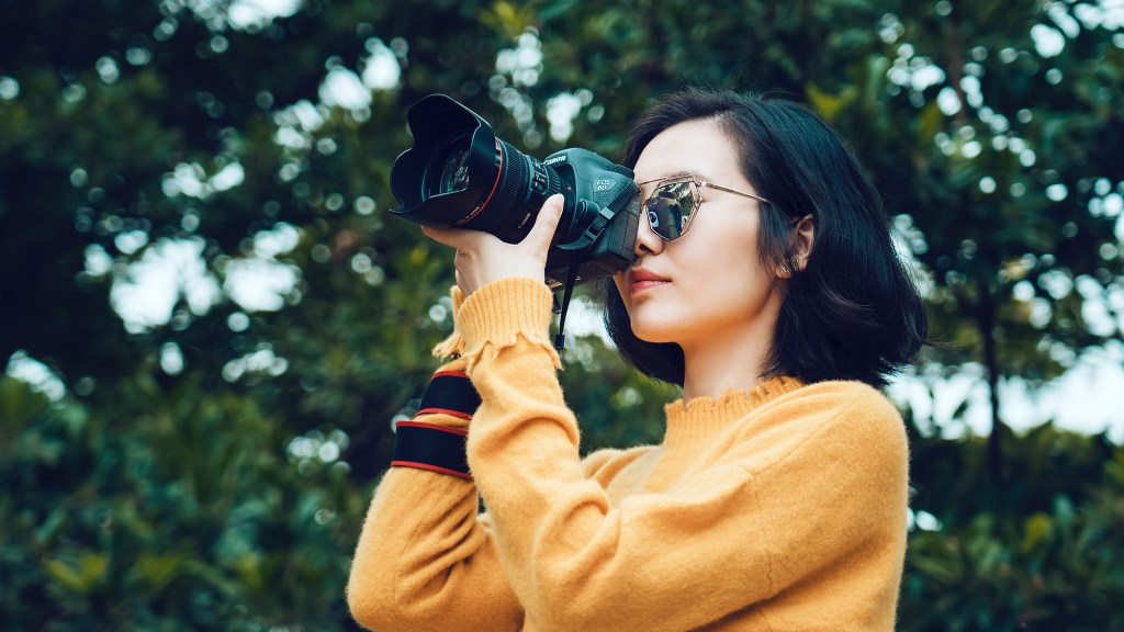 how to attract birds for photography