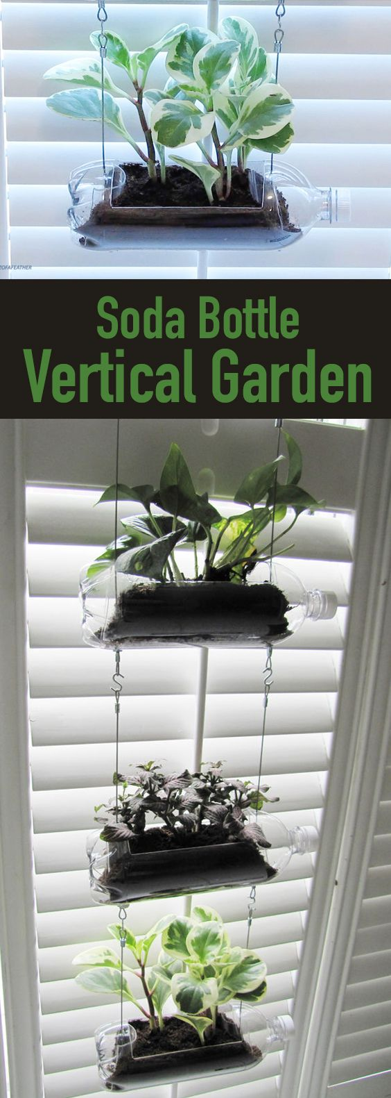 Learn how to create a vertical garden by turning plastic bottles into a hanging planter. Plastic bottle crafts | plastic bottle crafts DIY | plastic bottle planter | plastic bottle planters hanging | plastic bottle planters DIY | soda bottle crafts | plastic soda bottle crafts | diy soda bottle crafts | bottle crafts | bottle crafts DIY | plastic soda bottle crafts | upcycled bottles | upcycled bottles DIY | planters DIY | planter ideas | #plasticbottles #plasticbottlecrafts #planters #planterideas