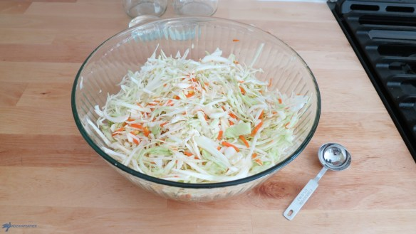 This sauerkraut recipe is not only simple & delicious, it has health benefits too!Twoounces of homemade sauerkraut has more probiotics than 100capsules! Enjoy it on a classic Reuben sandwich, loaded up with melted swiss cheese or a hotdog! Birdz of a Feather | carrot and ginger sauerkraut | sauerkraut | sauerkraut recipes | sauerkraut recipes easy | probiotic food | Probiotics for women benefits of | fermented cabbage | fermented cabbage recipe | fermented cabbage sauerkraut | fermented cabbage benefits | homemade sauerkraut | homemade sauerkraut recipes | homemade sauerkraut recipes easy