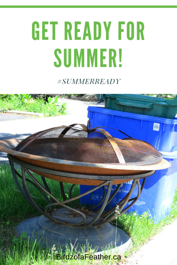 Give an old rusted fire pit a makeover by turning it into a planter! Birdz of a Feather | Planter Ideas | Planters | Container Garden | Planters DIY | Container Garden Ideas | Container Gardening | Fire Pit Planter #birdzofafeather.ca #planters #gardendesignideas #upcycledplanters #outdoorplanter #upcycle #repurpose #craft #upcycledplanter